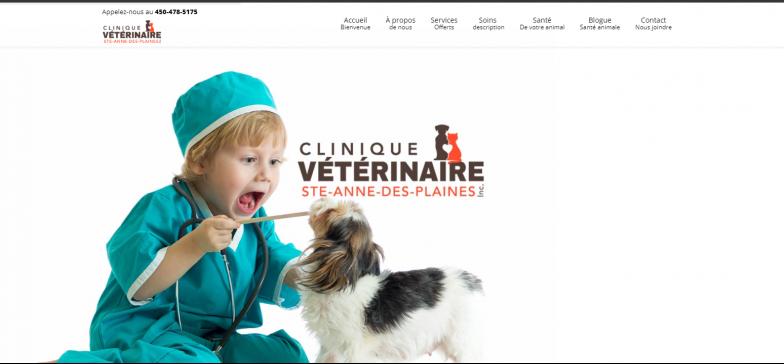 Vétérinaire Ste-Anne-des Plaines